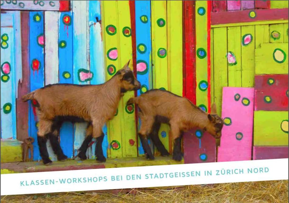 Klassen-Workshops
